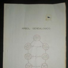 Manuscritos antiguos: ARBOL GENEALOGICO DEL APELLIDO BAJO TENIENDO EN CUENTA LAS PARTIDAS SACRAMENTALES Y DATOS PARROQUIA . Lote 32403877
