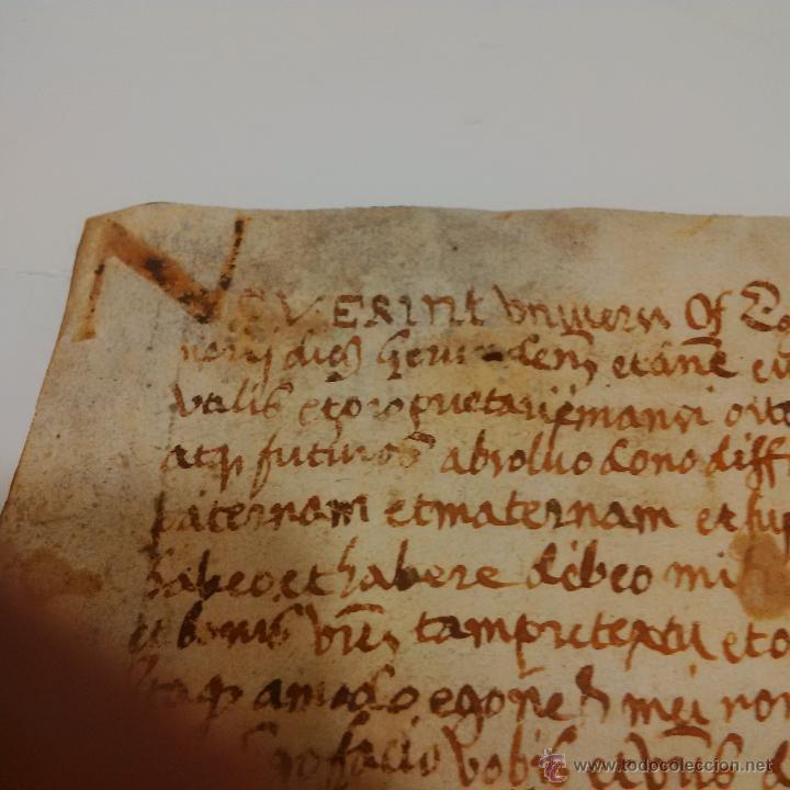 Manuscritos antiguos: MANUSCRITO DE PERGAMINO LETRAS GOTICAS 1.575 - GIRONA - Foto 6 - 47269182