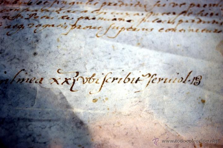 Manuscritos antiguos: ENORME MANUSCRITO EN PERGAMINO - INUSUAL POR TAMAÑO - AÑO 1650 - S. XVII - RARO - Foto 8 - 53016993
