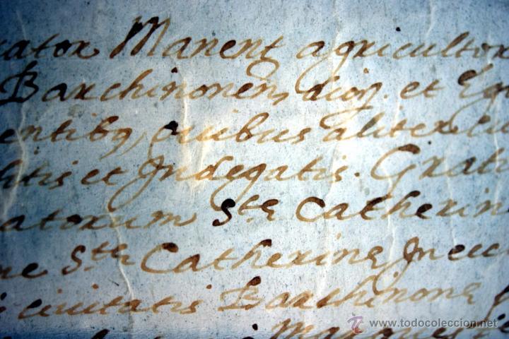 Manuscritos antiguos: ENORME MANUSCRITO EN PERGAMINO - INUSUAL POR TAMAÑO - AÑO 1650 - S. XVII - RARO - Foto 19 - 53016993