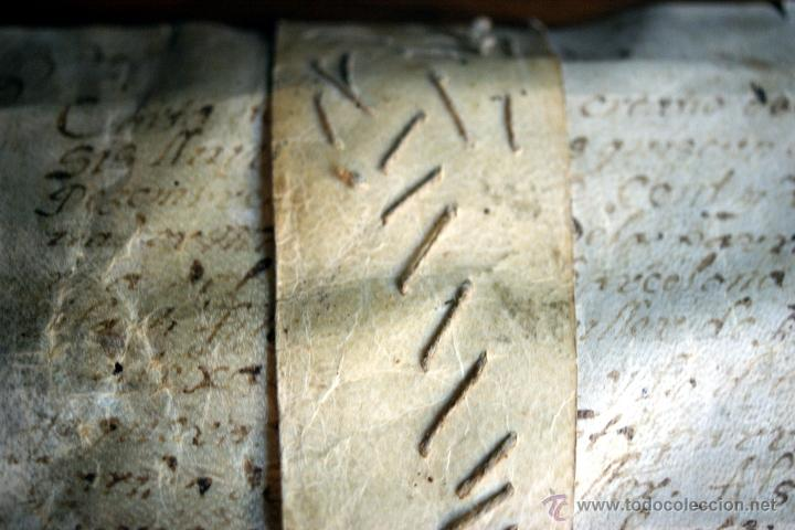 Manuscritos antiguos: ENORME MANUSCRITO EN PERGAMINO - INUSUAL POR TAMAÑO - AÑO 1650 - S. XVII - RARO - Foto 23 - 53016993