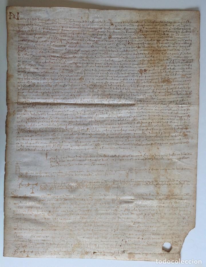 Manuscritos antiguos: Año 1500 * Tarragona * pergamino manuscrito con dibujos de hombres de epoca en el reverso * 41 cm - Foto 2 - 81227068