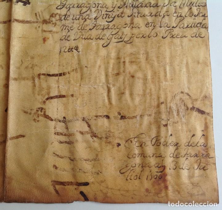 Manuscritos antiguos: Año 1500 * Tarragona * pergamino manuscrito con dibujos de hombres de epoca en el reverso * 41 cm - Foto 4 - 81227068