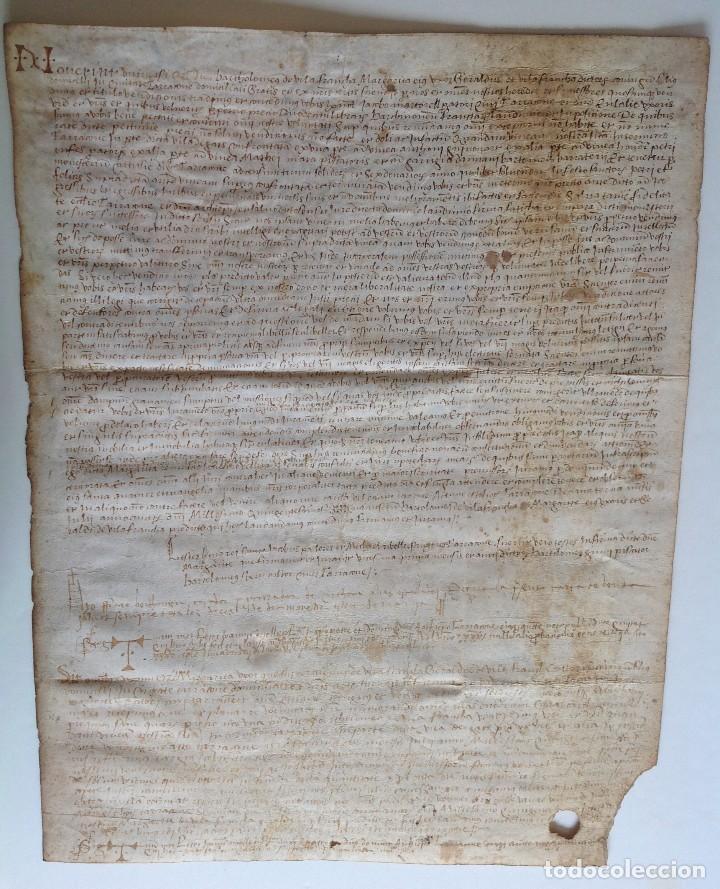 Manuscritos antiguos: Año 1500 * Tarragona * pergamino manuscrito con dibujos de hombres de epoca en el reverso * 41 cm - Foto 12 - 81227068