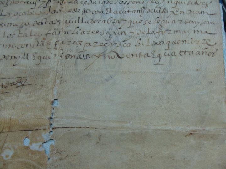 Manuscritos antiguos: 1594. PERGAMINO. INQUISICIÓN. CABRA, CÓRDOBA. NOMBRAMIENTO, SELLO, FIRMAS. - Foto 11 - 103705011