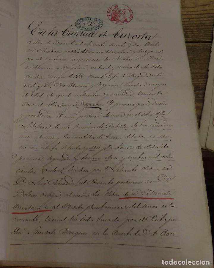 Manuscritos antiguos: CAZORLA, 1862, ESCRITURA DE PERMUTA DE UN OLIVAR - Foto 2 - 124442667
