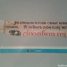 Manuscritos antiguos: FRAGMENTO DE CANTORAL MINIADO EN PERGAMINO. 550X90 MM.. Lote 138601312