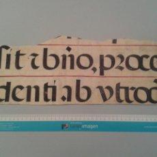 Manuscritos antiguos: FRAGMENTO DE CANTORAL MINIADO EN PERGAMINO. 410X160 MM.. Lote 138602266