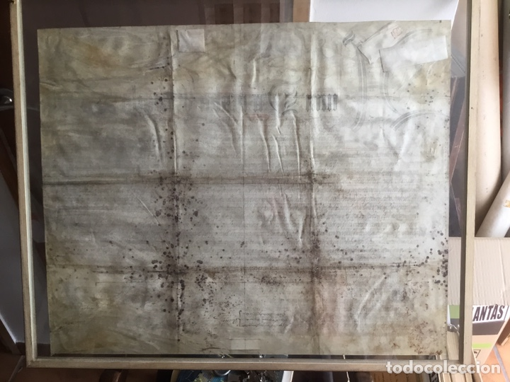 Manuscritos antiguos: Pergamino inglés con escudo real - Foto 9 - 164441804