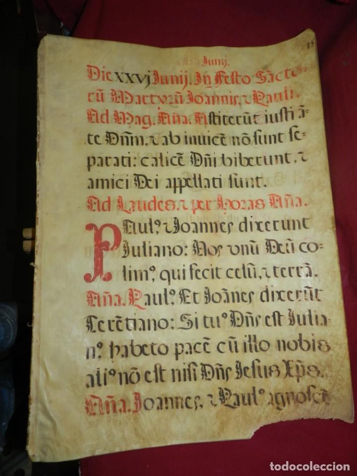 Manuscritos antiguos: (M) PERGAMINOS CANTORAL S.XVI PLIEGO DE 12 PÁG, GRAN TAMAÑO 66X48 CM - Foto 2 - 180922741
