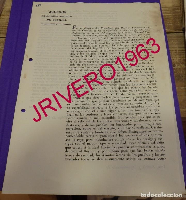 1833, FERNANDO VII, ACUERDO PARA AFRONTAR EL COLERA PROVINIENTE DE PORTUGAL (Coleccionismo - Documentos - Manuscritos)