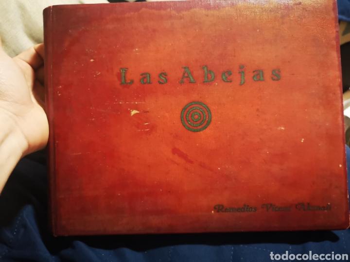 LAS ABEJAS, ANTIGUO TRABAJO MANUSCRITO DE 235 PÁGINAS, CON DIBUJOS Y FOTOGRAFÍAS (Coleccionismo - Documentos - Manuscritos)