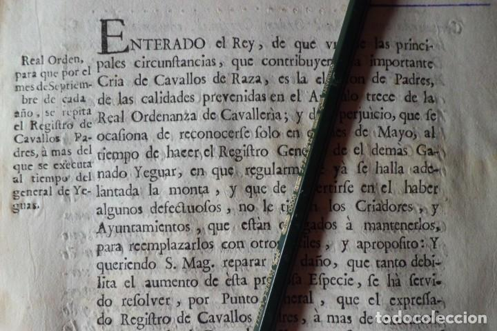 REAL ORDEN, CRIA DE CAVALLOS DE RAZA, AÑO 1.771 (Coleccionismo - Documentos - Manuscritos)