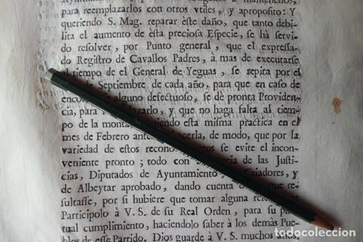 Manuscritos antiguos: REAL ORDEN, CRIA DE CAVALLOS DE RAZA, AÑO 1.771 - Foto 3 - 198614731