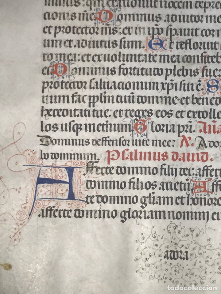 Manuscritos antiguos: HOJA VITELA, PRINCIPIOS SIGLO XV. PRECIOSA CALIGRAFíA, LETRAS EN COLORES, FILIGRANAS. A - Foto 3 - 210218075