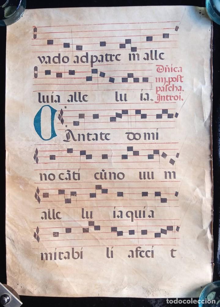 HOJA CANTORAL PERGAMINO - PARTITURA MUSICAL - 3 COLORES - DOBLE CARA - GRAN FORMATO - 56X40CM (Coleccionismo - Documentos - Manuscritos)