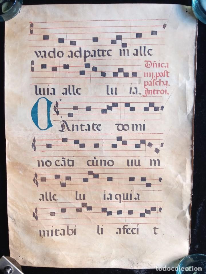 Manuscritos antiguos: HOJA CANTORAL PERGAMINO - PARTITURA MUSICAL - 3 COLORES - DOBLE CARA - GRAN FORMATO - 56x40cm - Foto 3 - 217173225