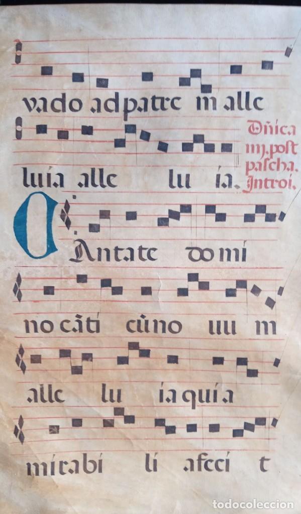 Manuscritos antiguos: HOJA CANTORAL PERGAMINO - PARTITURA MUSICAL - 3 COLORES - DOBLE CARA - GRAN FORMATO - 56x40cm - Foto 4 - 217173225