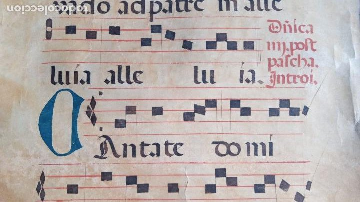 Manuscritos antiguos: HOJA CANTORAL PERGAMINO - PARTITURA MUSICAL - 3 COLORES - DOBLE CARA - GRAN FORMATO - 56x40cm - Foto 6 - 217173225