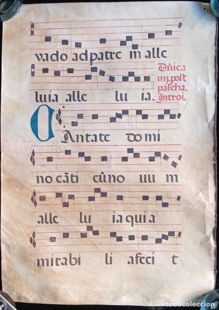 Manuscritos antiguos: HOJA CANTORAL PERGAMINO - PARTITURA MUSICAL - 3 COLORES - DOBLE CARA - GRAN FORMATO - 56x40cm - Foto 7 - 217173225