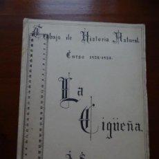 Manuscrits anciens: HISTORIA NATURAL, LA CIGUEÑA, 1926. Lote 254660990