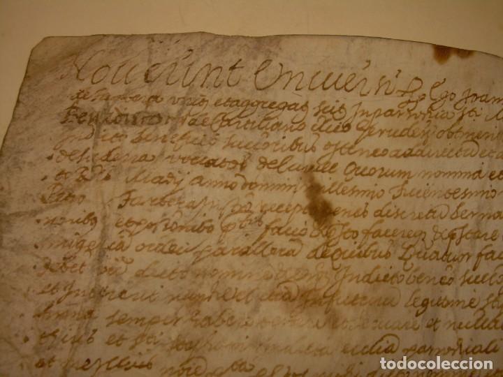 Manuscritos antiguos: ANTIGUA ESCRITURA DE PERGAMINO AÑO 1590 - GERONA - BESALU - VALLE DE OSTOLESIO. - Foto 5 - 224073383