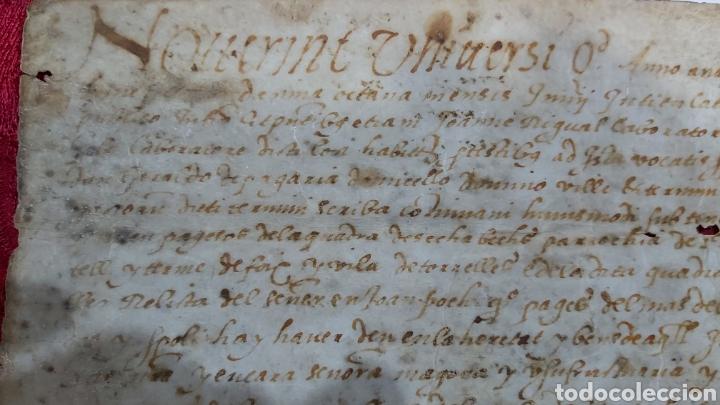 Manuscritos antiguos: PERGAMINO. MANUSCRITO 1571. MARQUESADO TORRELLES DE FOIX. DON GARAU DE PAGUERA/PEGUERA. SECABECS - Foto 3 - 229588080