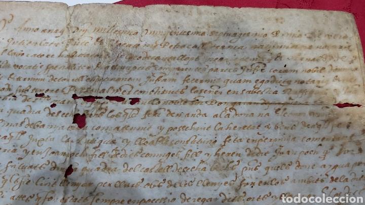 Manuscritos antiguos: PERGAMINO. MANUSCRITO 1571. MARQUESADO TORRELLES DE FOIX. DON GARAU DE PAGUERA/PEGUERA. SECABECS - Foto 4 - 229588080