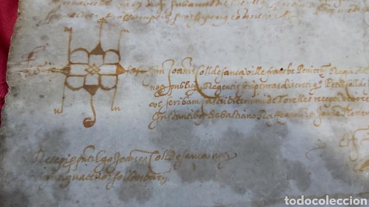 Manuscritos antiguos: PERGAMINO. MANUSCRITO 1571. MARQUESADO TORRELLES DE FOIX. DON GARAU DE PAGUERA/PEGUERA. SECABECS - Foto 5 - 229588080