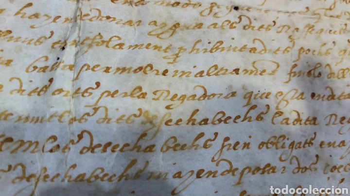 Manuscritos antiguos: PERGAMINO. MANUSCRITO 1571. MARQUESADO TORRELLES DE FOIX. DON GARAU DE PAGUERA/PEGUERA. SECABECS - Foto 6 - 229588080