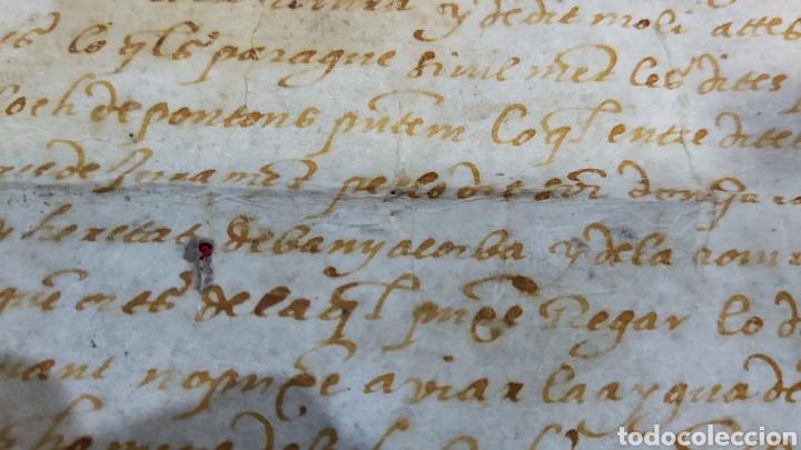Manuscritos antiguos: PERGAMINO. MANUSCRITO 1571. MARQUESADO TORRELLES DE FOIX. DON GARAU DE PAGUERA/PEGUERA. SECABECS - Foto 8 - 229588080