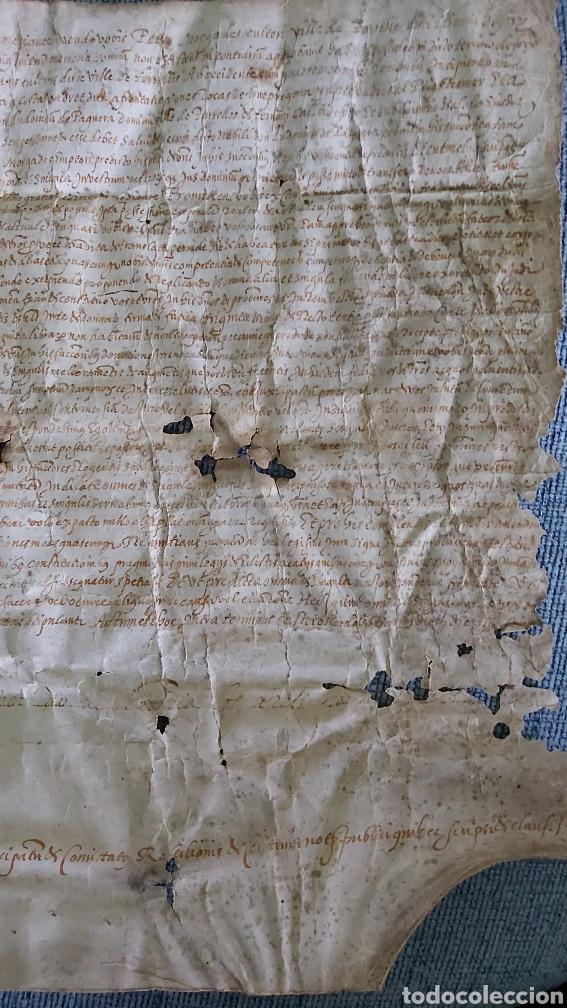 Manuscritos antiguos: MANUSCRITO PERGAMINO AÑO 1591. MARQUESADO TORRELLES DE FOIX. LLUIS DE PEGUERA. VILAFRANCA PENEDES - Foto 4 - 231676085