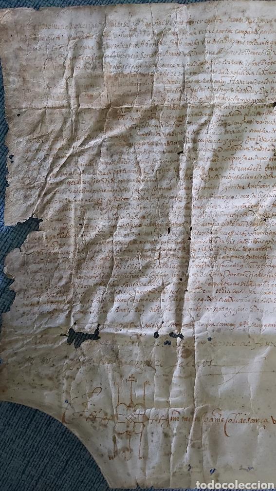 Manuscritos antiguos: MANUSCRITO PERGAMINO AÑO 1591. MARQUESADO TORRELLES DE FOIX. LLUIS DE PEGUERA. VILAFRANCA PENEDES - Foto 5 - 231676085