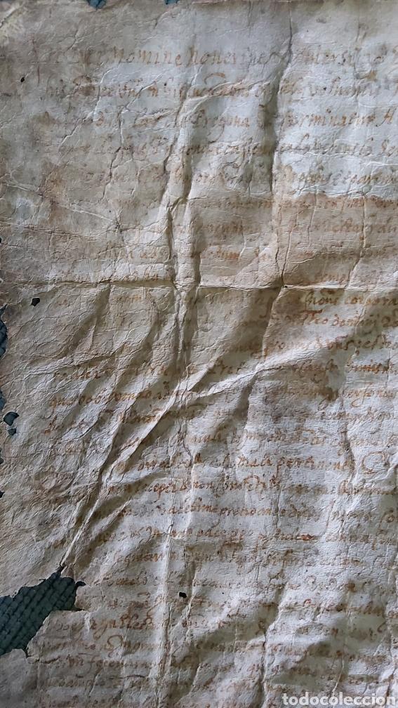 Manuscritos antiguos: MANUSCRITO PERGAMINO AÑO 1591. MARQUESADO TORRELLES DE FOIX. LLUIS DE PEGUERA. VILAFRANCA PENEDES - Foto 7 - 231676085