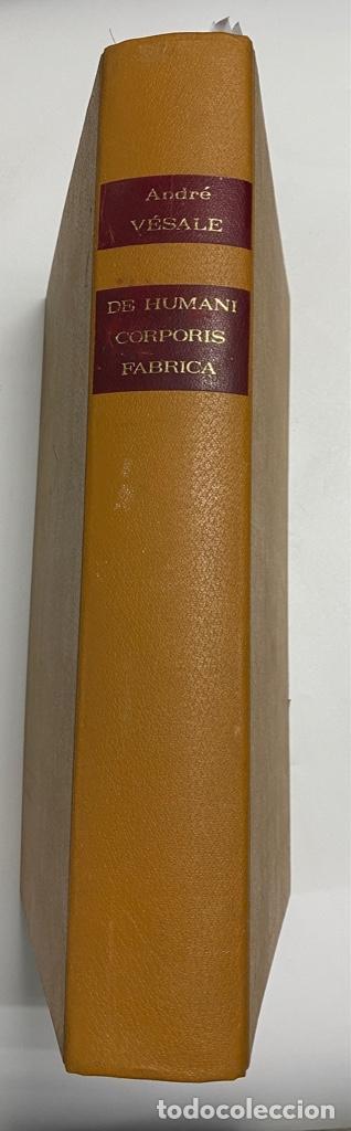 Manuscritos antiguos: HUMANI CORPORIS FABRICA. ANDRE VESALE. FACSIMIL DEL EJEMPLAR Nº 224. VER FOTOS - Foto 2 - 243547935