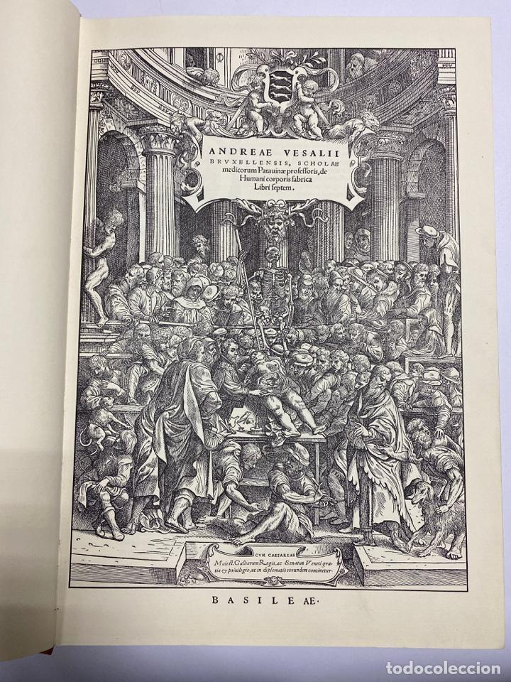 Manuscritos antiguos: HUMANI CORPORIS FABRICA. ANDRE VESALE. FACSIMIL DEL EJEMPLAR Nº 224. VER FOTOS - Foto 4 - 243547935