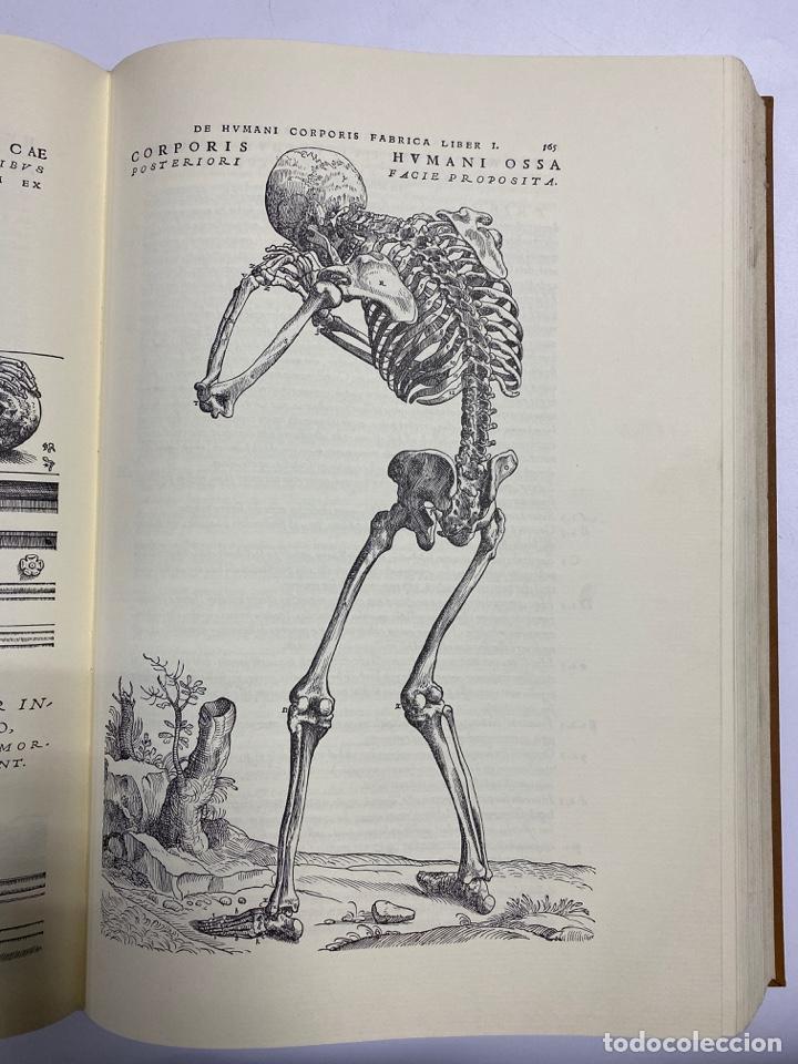 Manuscritos antiguos: HUMANI CORPORIS FABRICA. ANDRE VESALE. FACSIMIL DEL EJEMPLAR Nº 224. VER FOTOS - Foto 14 - 243547935