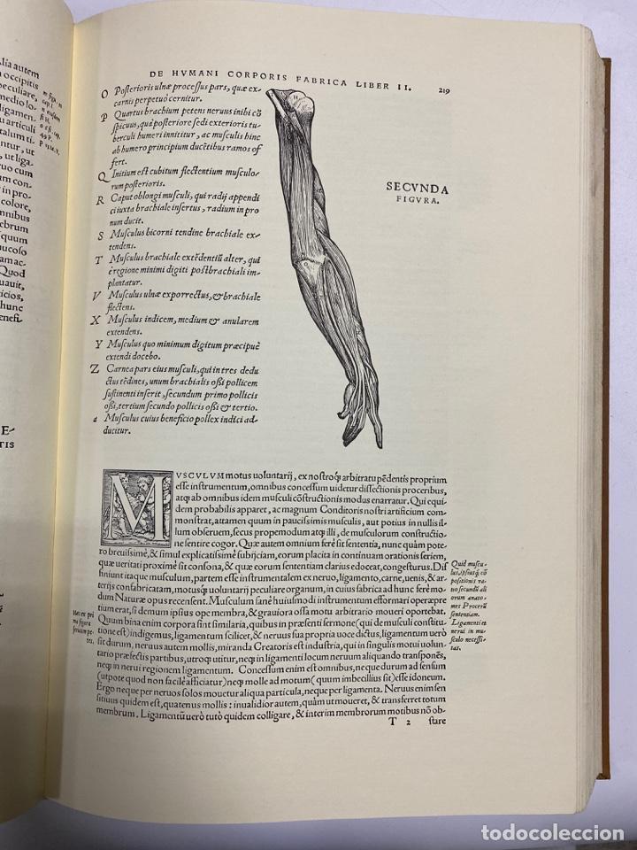 Manuscritos antiguos: HUMANI CORPORIS FABRICA. ANDRE VESALE. FACSIMIL DEL EJEMPLAR Nº 224. VER FOTOS - Foto 18 - 243547935