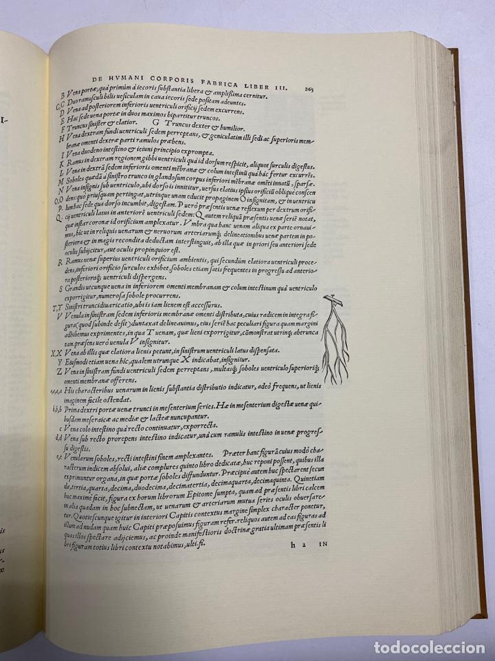 Manuscritos antiguos: HUMANI CORPORIS FABRICA. ANDRE VESALE. FACSIMIL DEL EJEMPLAR Nº 224. VER FOTOS - Foto 19 - 243547935