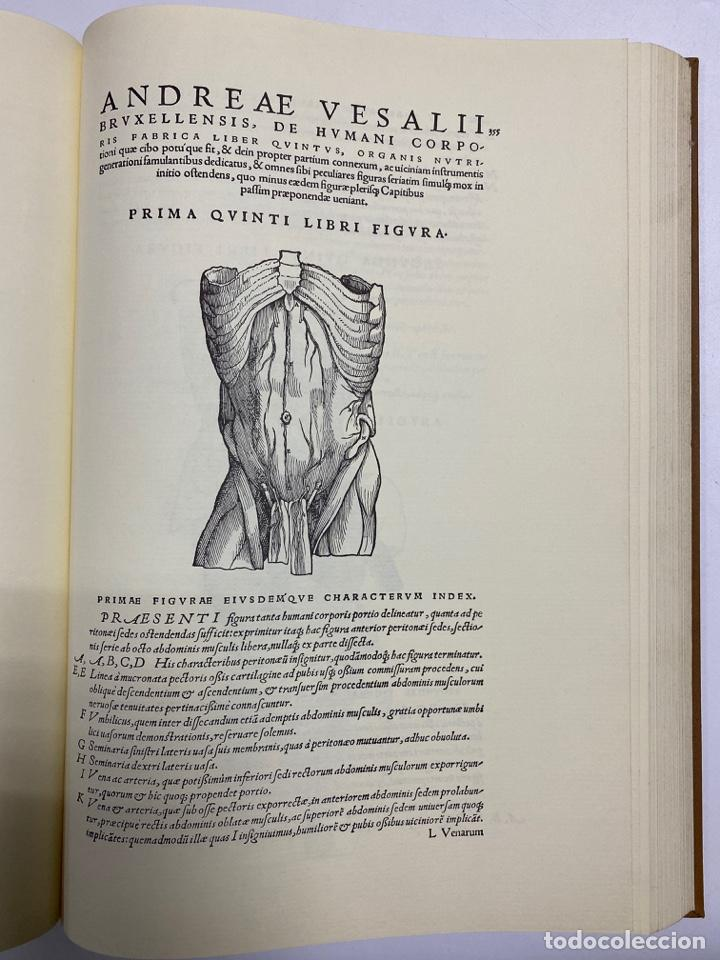 Manuscritos antiguos: HUMANI CORPORIS FABRICA. ANDRE VESALE. FACSIMIL DEL EJEMPLAR Nº 224. VER FOTOS - Foto 21 - 243547935