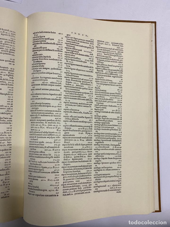 Manuscritos antiguos: HUMANI CORPORIS FABRICA. ANDRE VESALE. FACSIMIL DEL EJEMPLAR Nº 224. VER FOTOS - Foto 29 - 243547935