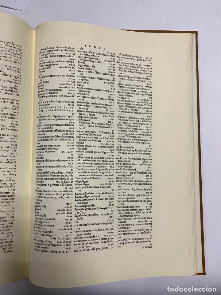 Manuscritos antiguos: HUMANI CORPORIS FABRICA. ANDRE VESALE. FACSIMIL DEL EJEMPLAR Nº 224. VER FOTOS - Foto 30 - 243547935