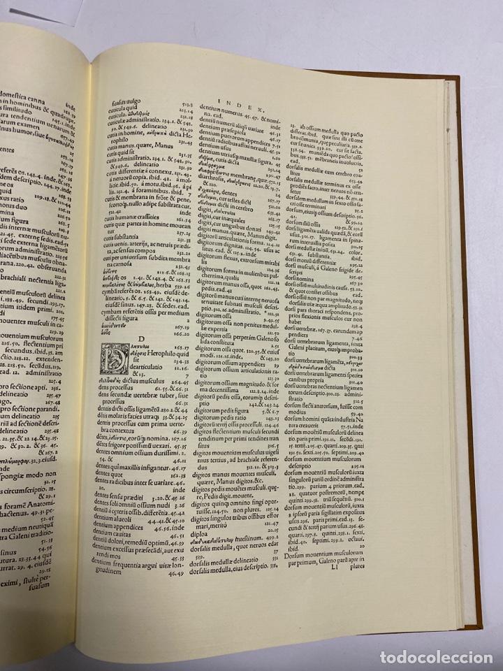 Manuscritos antiguos: HUMANI CORPORIS FABRICA. ANDRE VESALE. FACSIMIL DEL EJEMPLAR Nº 224. VER FOTOS - Foto 31 - 243547935