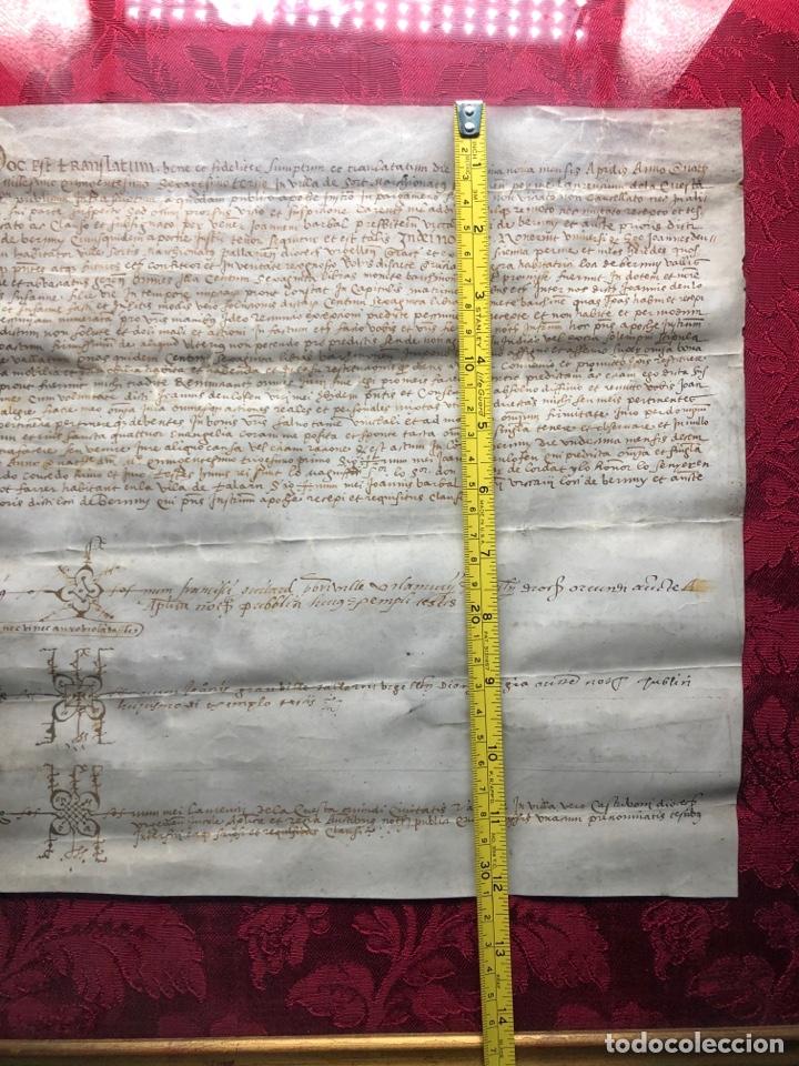 Manuscritos antiguos: Manuscrito en pergamino año 1531 Cataluña/Villa de Sort/Don Gaspar de Lordat/Perot Farrer/ - Foto 7 - 257579335