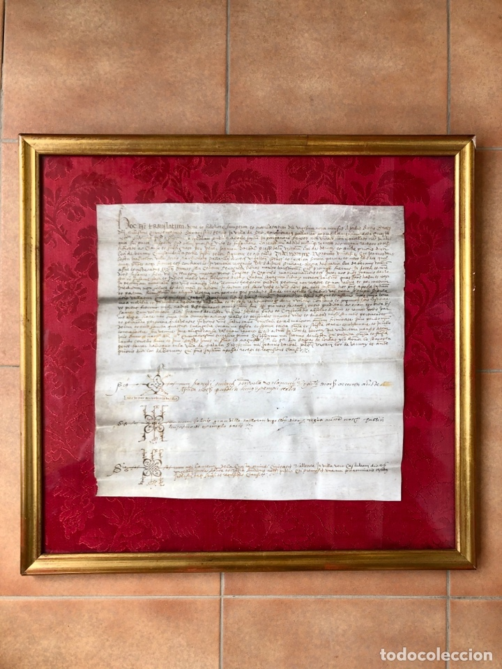 Manuscritos antiguos: Manuscrito en pergamino año 1531 Cataluña/Villa de Sort/Don Gaspar de Lordat/Perot Farrer/ - Foto 2 - 257579335