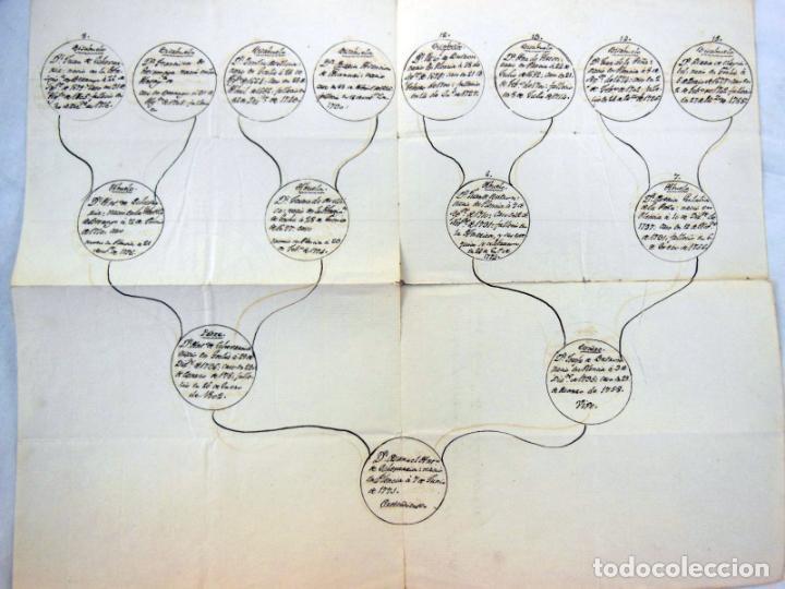 ÁRBOL GENEALÓGICO - FAMILY TREE : DE MANUEL ANTONIO DE ECHEVARRIA BUTRON (VIZCAYA) 1810 (Coleccionismo - Documentos - Manuscritos)