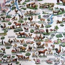 Mapas contemporáneos: ANTIGUO MAPA DE PRODUCCIÓN AGRÍCOLA Y GANADERA DE LOMBARDÍA (ITALIA) --- AÑOS 40. Lote 25426862