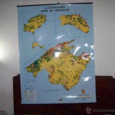 Mapas contemporáneos: IMPRESSIONANT MAPA DE VEGETACIÓ DE LES ILLES BALEARS DE GRAN TAMANY( MALLORCA,MENORCA,EIVISSA).FOTOS. Lote 52014669