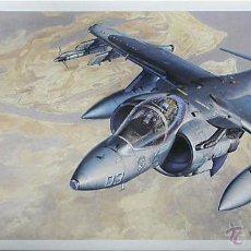 Maquetas: MAQUETA HASEGAWA 1/72 MCDONNELL DOUGLAS AV-8B HARRIER II #D19 (00449). Lote 53580067
