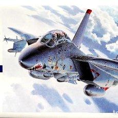 Maquetas: GRUMMAN F-14A TOMCAT (HIGH VISIBILITY) 172 HASEGAWA. Lote 144393714
